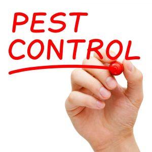 Professional Pest Control Frisco TX
